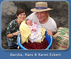 Hans, Marsha & Karen at Lyman Kona Coffee Farms