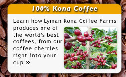 Learn About the Lyman Kona Coffee Farms
