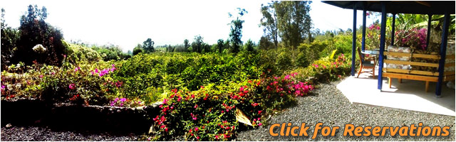 CLICK for Reservations