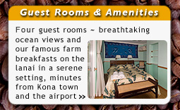 Mango Sunset Kona Hawaii Bed Breakfast Accommodations Guest Rooms
